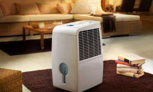 Что использовать для очищения воздуха в квартире