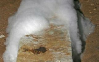 Причины возникновения плесени в погребе и способы борьбы с ней