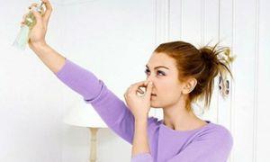 Способы устранения запаха сырости в квартире