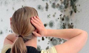 Эффективные средства обработки стен против сырости