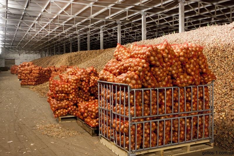 Важнейшее условие сохранности овощей/фруктов - эффективная вентиляция