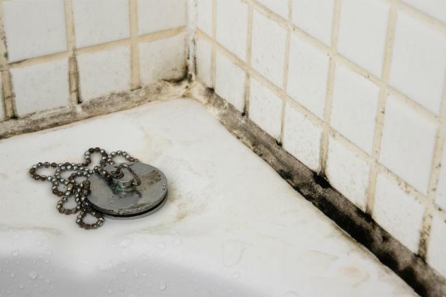 Грибок на стенках в ванной комнате