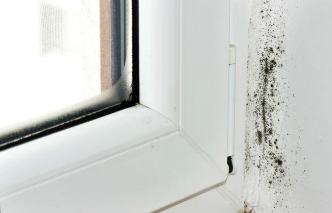 Сырость на пластиковых окнах
